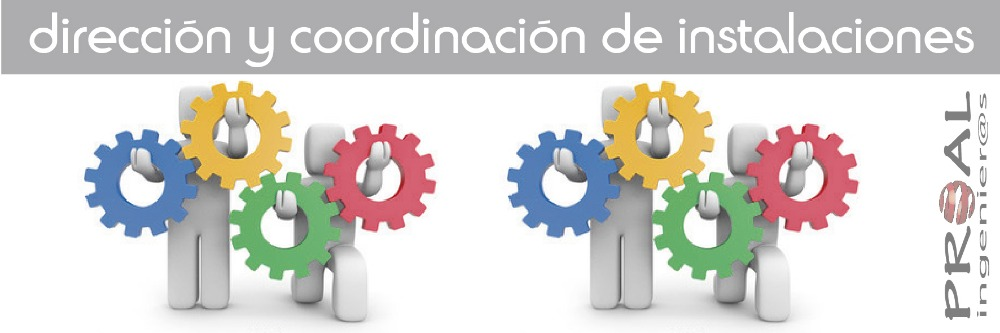http://proalingenieros.com/wp-content/uploads/2013/02/direccion-y-coordinacion.jpg