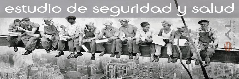 http://proalingenieros.com/wp-content/uploads/2013/02/estudio-seguridad.jpg
