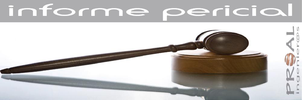http://proalingenieros.com/wp-content/uploads/2013/02/informe-pericial.jpg